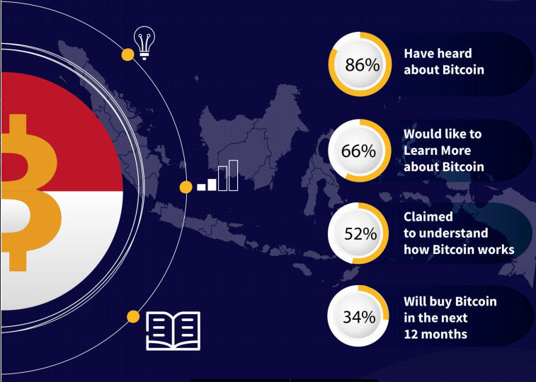 key findings survey bitcoin indonesia